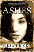 28816-ashes