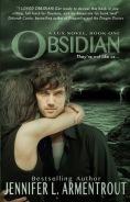 de9e6-obsidian